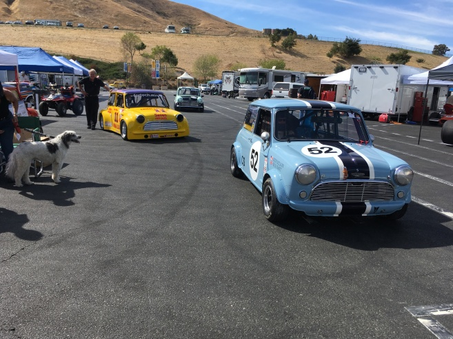 Let's go racing! Photo credit: Greg Birch